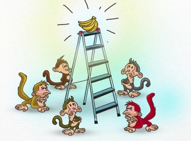 5 con khỉ và 1 nải chuối: Bài học về những nhà lãnh đạo vùi dập và nhân viên mù quáng - Ảnh 1.