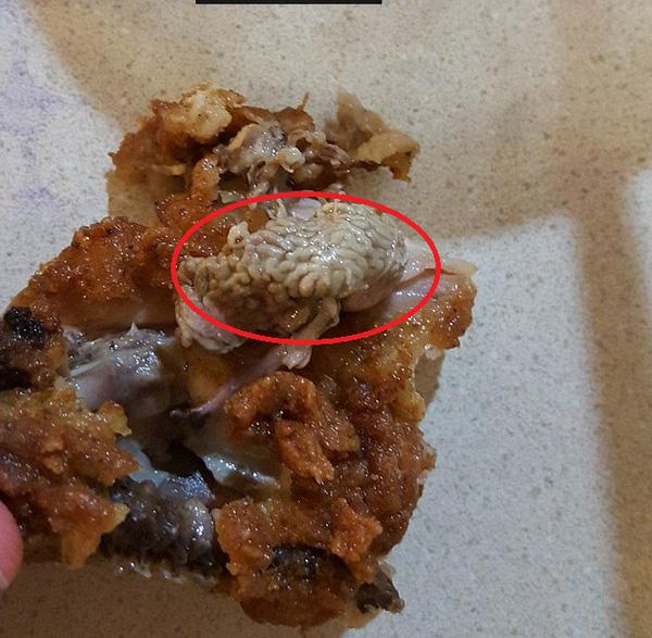 KFC tiếp tục khiến khách hàng kinh hãi vì vật thể lạ như... bộ não trong thịt gà rán - Ảnh 1.