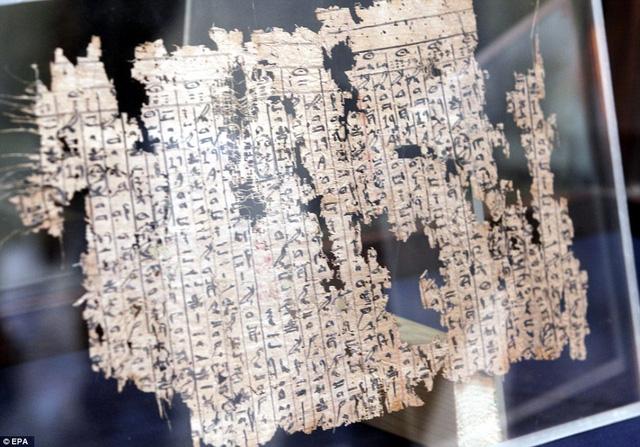 Tìm thấy nhật ký người xây kim tự tháp đã 4.500 năm tuổi, có cả bảng lương công nhân - Ảnh 3.