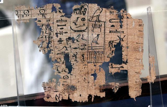 Tìm thấy nhật ký người xây kim tự tháp đã 4.500 năm tuổi, có cả bảng lương công nhân - Ảnh 4.