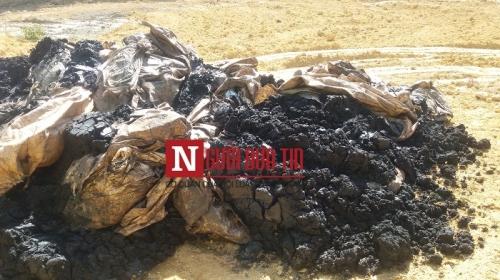 Bộ trưởng, Chủ tịch tỉnh: Kiểm tra gấp việc nhà thầu của Formosa chôn chất thải - Ảnh 2.