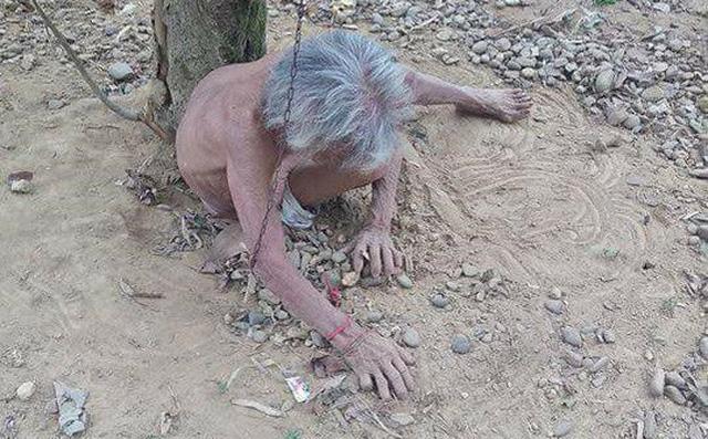 Cụ bà cởi trần bị chồng xích vào gốc cây ngoài vườn không bị tâm thần
