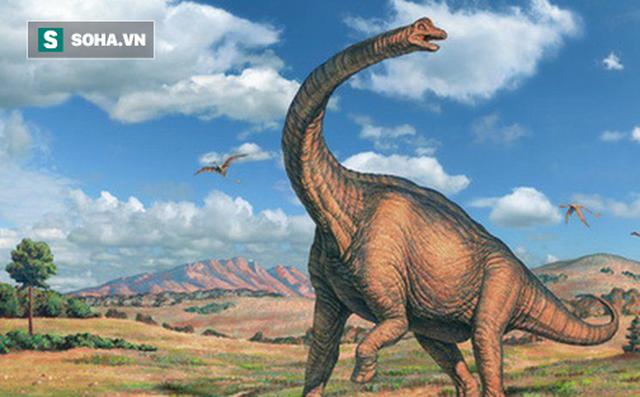 Phát hiện hóa thạch khổng lồ mới: Khủng long còn lớn hơn tưởng tượng