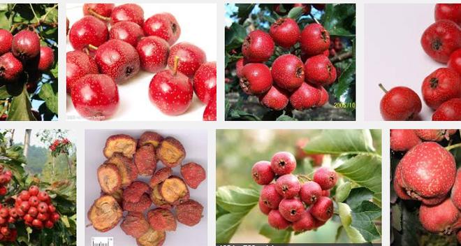 6 thực phẩm đặc trị dành cho người sợ bệnh tắc nghẽn mạch máu - Ảnh 7.