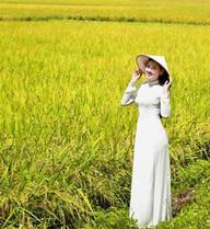 Không phải phân bón hay thuốc bảo vệ thực vật, đây mới thực sự là mảng kinh doanh lãi nhất trong chuỗi nông nghiệp