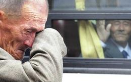 Những bức ảnh có sức mạnh vô hình khiến hàng triệu người không cầm được nước mắt