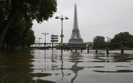 Ngay trước thềm Euro 2016, nước Pháp đang khiến hàng triệu con tim lo lắng