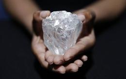 Viên kim cương lớn thứ 2 thế giới bị trả giá thấp