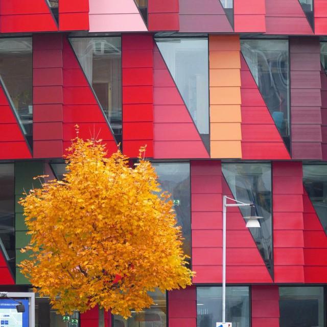 Tròn mắt với loạt kiến trúc độc đáo ở Gothenburg - Thụy Điển: Góc nào cũng bình yên và đẹp tuyệt! - Ảnh 4.