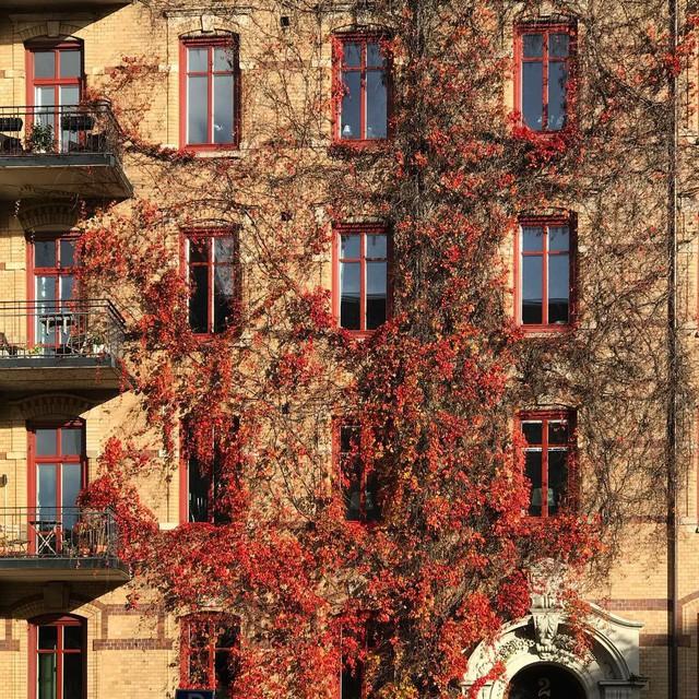 Tròn mắt với loạt kiến trúc độc đáo ở Gothenburg - Thụy Điển: Góc nào cũng bình yên và đẹp tuyệt! - Ảnh 5.