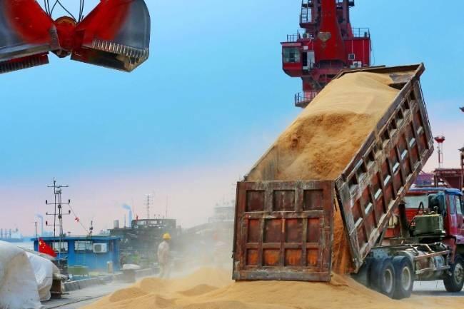 Trung Quốc có thực sự tăng mua nông sản Mỹ? - Ảnh 2.