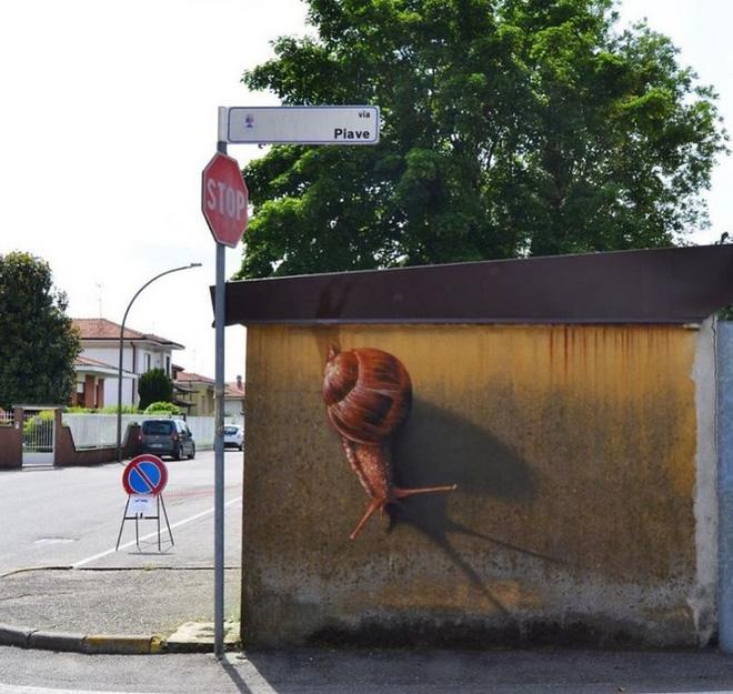 Loạt ảnh nghệ thuật đường phố sẽ khiến bạn không khỏi ngỡ ngàng vì chúng sinh ra dường như để cho nhau - Ảnh 7.
