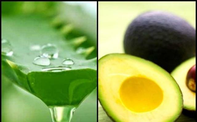 7 lợi ích sức khỏe của sinh tố nha đam và trái bơ