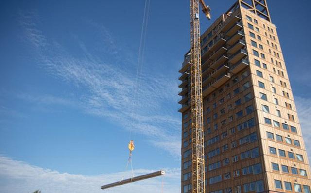 Nghiên cứu Châu Âu khuyến khích làm nhà, xây chung cư bằng gỗ để bảo vệ môi trường
