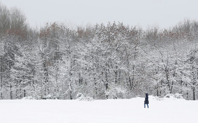 24h qua ảnh: Cô gái đi trong công viên phủ tuyết trắng ở Bulgaria