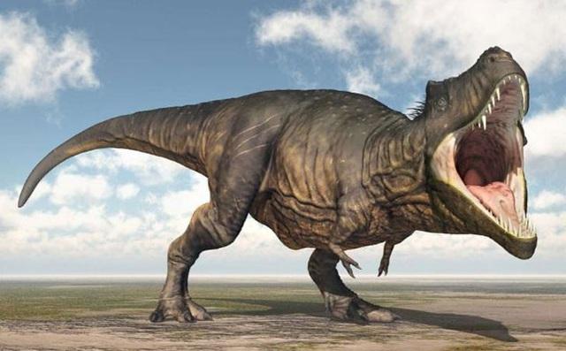 Top 10 sự thật ít người biết về loài khủng long ăn thịt đáng sợ nhất thế giới