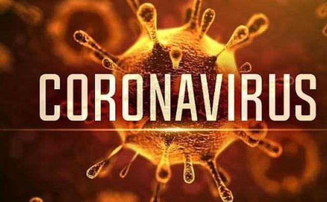 Thủ tướng quyết định công bố dịch do virus corona tại Việt Nam - Ảnh 1.
