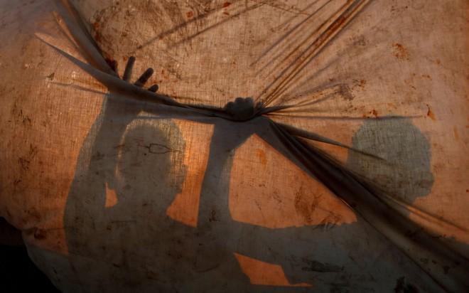 24h qua ảnh: Hươu đực gọi bạn tình trong sương sớm mùa thu - Ảnh 10.